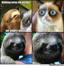 Sloth Asthma Meme - angry sex by shadowflare meme center
