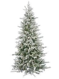 discount trees fishwolfeboro