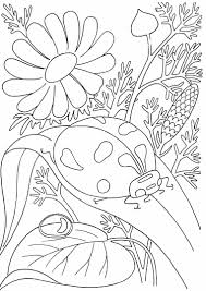 lovely rainbow coloring page fresh coloring pages template