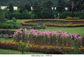 Hilo Flowers - nani mau gardens hilo hawaii stock photos u0026 nani mau gardens hilo