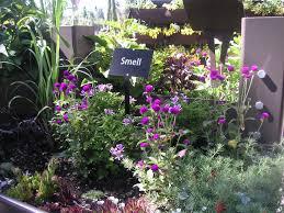 25 best images of sensory garden design ideas sensory garden and