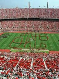 Ohio State Outdoor Rug 170 Best Ohio State Buckeyes Images On Pinterest