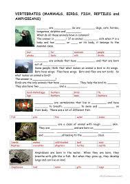 free printable worksheets vertebrates invertebrates animals vertebrates and invertebrates worksheet free esl printable