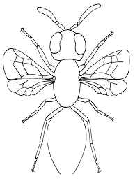 love bug coloring pages cartoons disney cartoons printable
