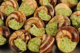 cuisine bourgogne bourgogne snails stock image image of regionally snails 18150199