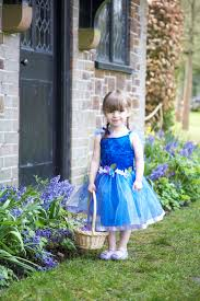 flower fairy this adorable vibrant blue fairy fancy dress