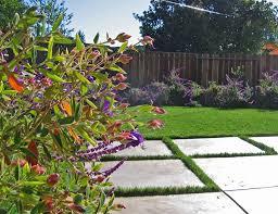 landscape inspiration modern no lawn front yard contemporary landscape houston inside