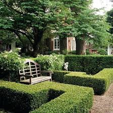 Garden Shrubs Ideas Garden Shrubs A Shrub Garden Does Not Need To Divide Spaces Or Act