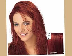 aliexpress com buy free shipping henna hair dye color for men