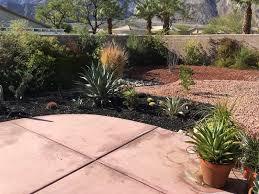 pampas2palms winter gardens