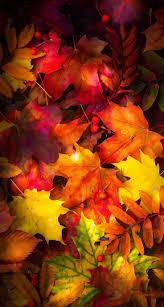 best 25 fall wallpaper ideas on pinterest fall