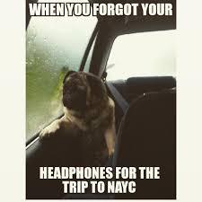 Depressed Pug Meme - nayc memes on twitter nayc naycmemes nayc15 naycrumors http
