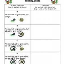 predictions worksheets have fun teaching