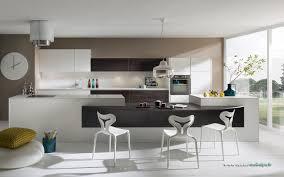 cuisiniste yvelines cuisine mélia blanc verni et chêne panga cuisiniste salle