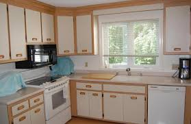cabinet stunning kitchen cabinets doors stunning cabinet with