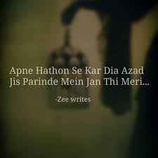 dia quote google 277 images about zee writes on we heart it see more about hindi