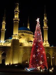 best 25 lebanon tree ideas on pinterest