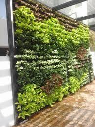 Vertical Garden Blanket Green Walls Indoor And Outdoor Vertical Gardens Lifewall