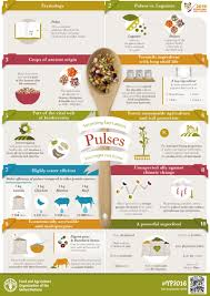 About Surprising Facts About Pulses You Might Not Know