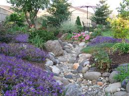 Backyard Creek Ideas Beautiful Dry Creek Bed With Low Water Plants Designed By Simple