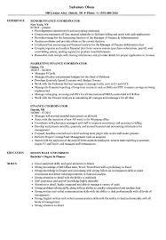 resume templates word accountant trailers movie previews finance coordinator resume sles velvet jobs