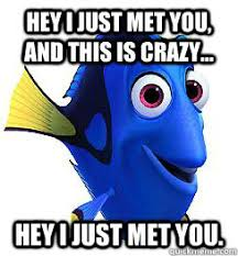 Dory Memes - hey i just met you dory meme memes quickmeme