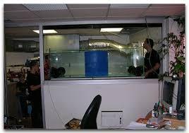 aquarium bureau aquarium bureau 100 images as 25 melhores ideias de mini