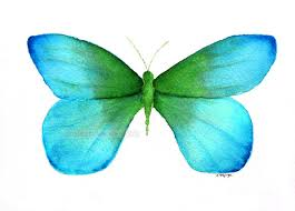 Blue And Green Butterfly - watercolor painting blue green butterfly archival print