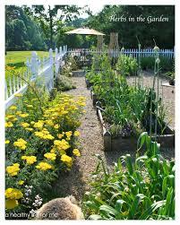 backyard vegetable garden layout vegetable garden layout colorado the garden inspirations