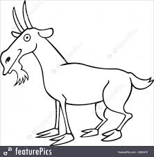 domestic animals funny goat for coloring book stock