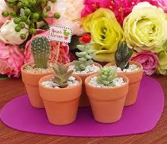 pots for succulents for sale terracotta pots succulents for sale bulk succulent wedding favors