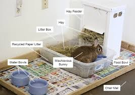 How To Build An Indoor Rabbit Hutch Housing Your Rabbit Indoors Rabbit Cages Bunny Condos