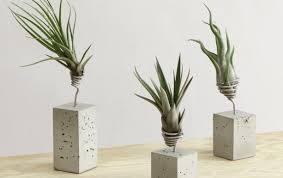 awesome decorative indoor planters images amazing design ideas