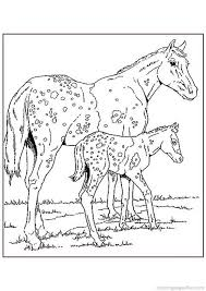 94 best coloring pages horses images on pinterest coloring