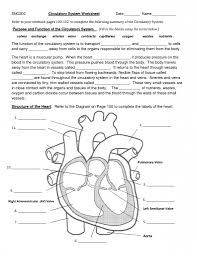 worksheets biology corner worksheets answers atidentity com free
