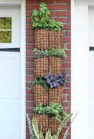 diy vertical herb garden vertical herb garden super simple and easy diy project