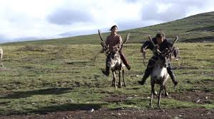 tsaatan mongolian reindeer people children riding reindeers