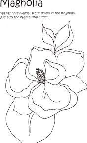 magnolias colouring pages art lessons pinterest magnolia