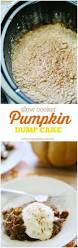 thanksgiving baking recipes top 25 best pumpkin dump cakes ideas on pinterest easy pumpkin