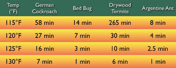 Kill Bed Bugs Bed Bug Problem Solver Discreet Heat Remediation Llc