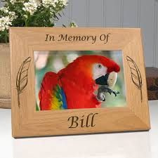 In Memory Of Gifts Personalised 25 Best In Memory Of My Cat Oscar Images On Pinterest Pet