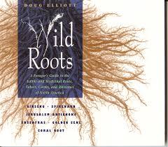 native american plants used for medicine nc medicine u0026 herbal books