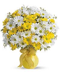 teleflora u0027s upsy daisy bouquet teleflora