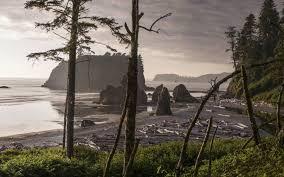 Washington beaches images Trazee travel top 5 pacific ocean beaches in washington state jpg