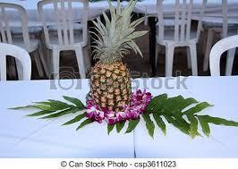 stock photos of pineapple centerpiece csp3611023 search