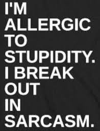 Cubicle Meme - i m allergic to stupidity i break out in sarcasm funny