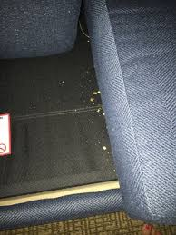 Comfort Suites Amelia Island Sofa Bed Hasn U0027t Been Cleaned In Quite A While A Hanger Was Left