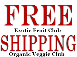 organic fruit of the month club fruit club with free shipping 3 month membership