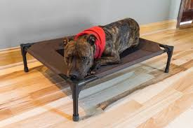 Barker Dog Bed Best Bed 17 Best Ideas About White Queen Bed Frame On Pinterest