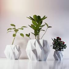 Types Of Indoor Plants Beautiful Indoor Plant Containers Types Of Gardens And Garden Easy